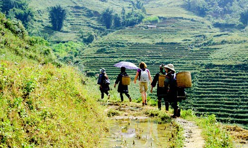 7-Day Northern Vietnam Tour: Hanoi - Halong Bay - Sapa Trekking