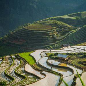 Mu Cang Chai, Vietnam's emerald mountain gem named among world's most beautiful