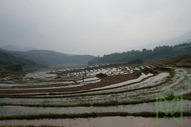 Pu Luong Nature Reserve 2 days 1 night - The Adventure