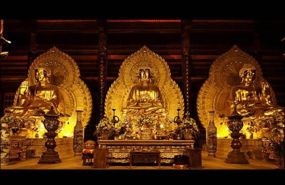 Bai Dinh – Trang An 1 Day