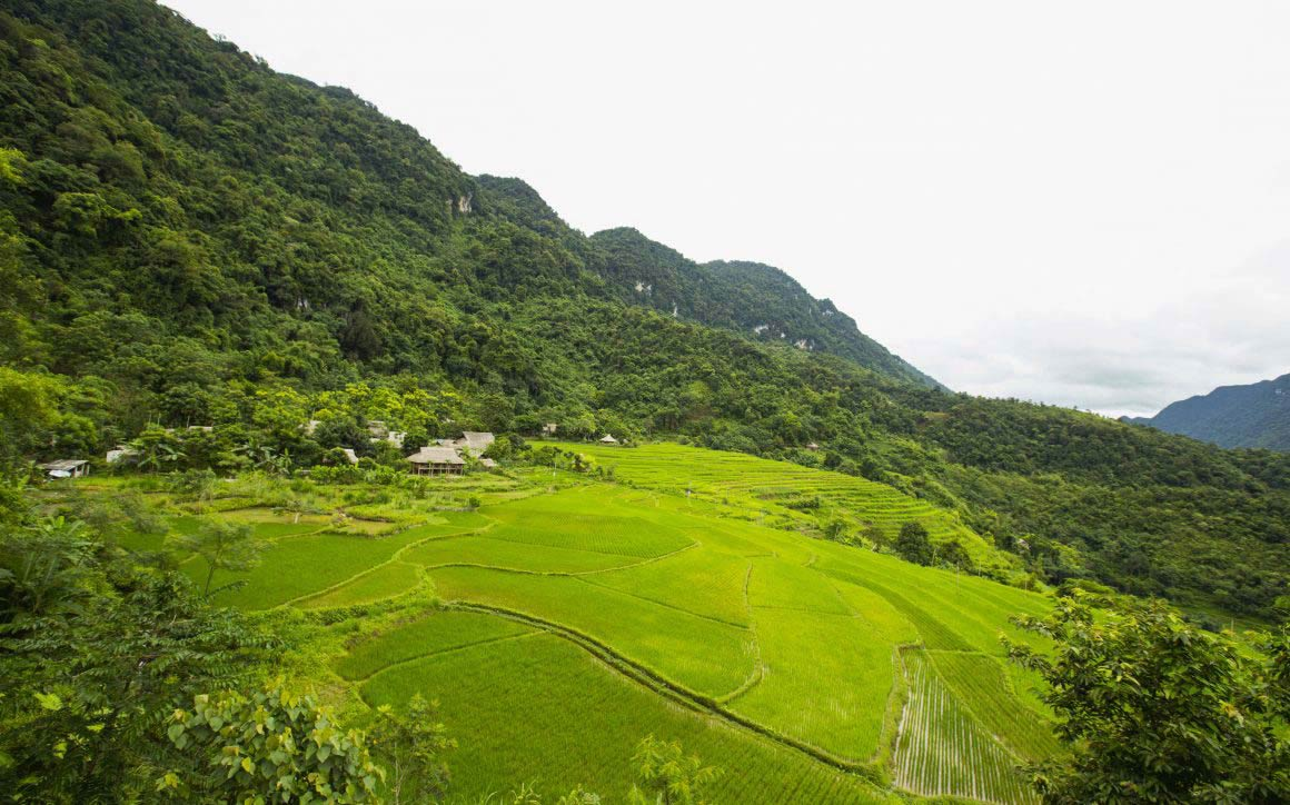Pu Luong Nature Reserve - Ninh Binh 3 days 2 nights - The Trip