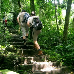 Bai Dinh – Trang An – Cuc Phuong National Park 2 days 1 night