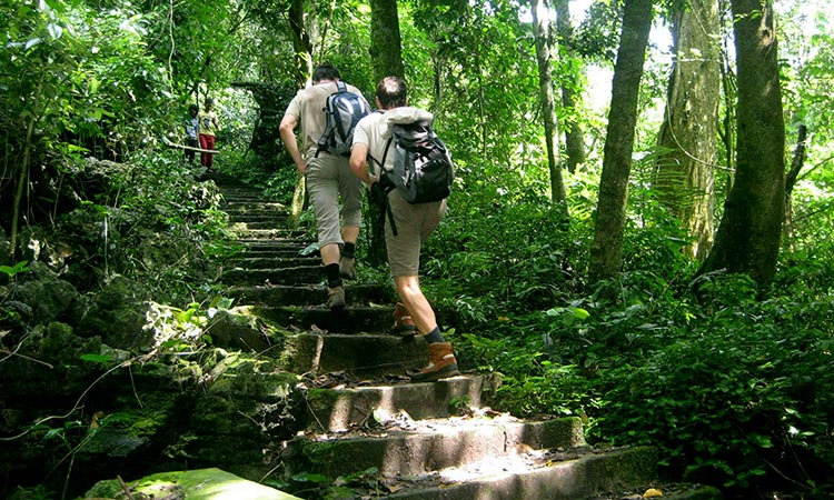 Bai Dinh - Trang An - Cuc Phuong National Park 2 days 1 night