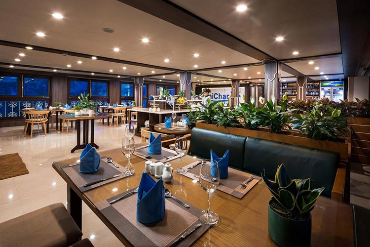Lan Ha Bay Cruise - Unicharm Cruise