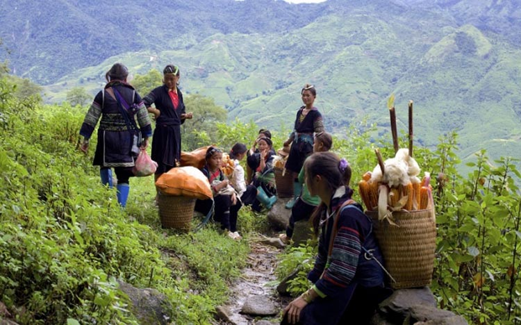 1-Day Trekking From Sapa: 18km Off The Beaten Track Hard Trek