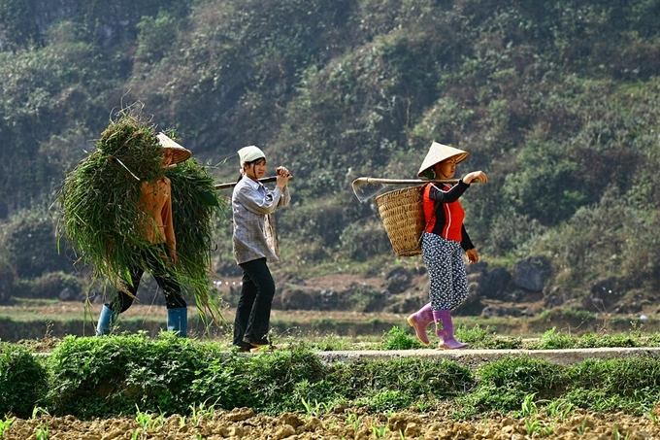 Ha Giang's ample bosom nurtures its valleys, rivers